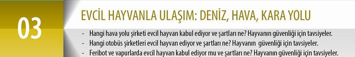 03_Ulasım_Sarı