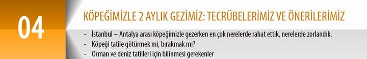 04_2AylıkGezi_Turuncu
