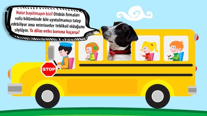 Google_Otobus_Bubble