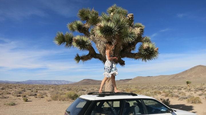 Laura-Dekker-araba-yolculugu