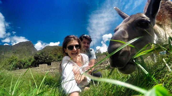 Machu-Picchu-ve-lama
