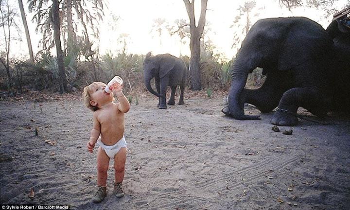 Tippi-bebeklik