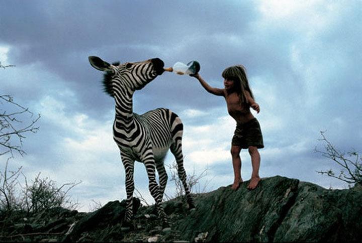 Tippi-ve-Zebra