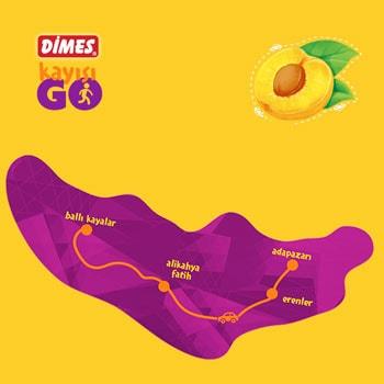 dimes-go-kayisi-map-3