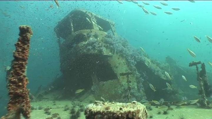 koh-phi-phi-rehberi-dalis-king-cruiser-wreck