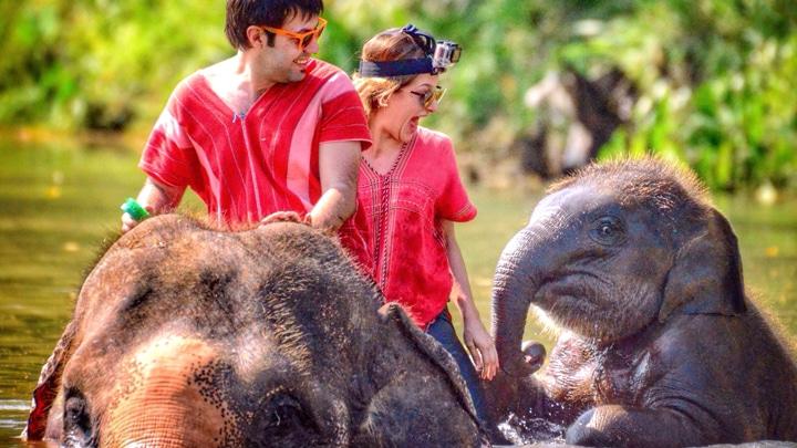 tayland-gezi-rehberi-chiang-mai-fil-bakıcılığı