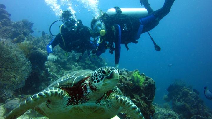 tayland-gezi-rehberi-dalış
